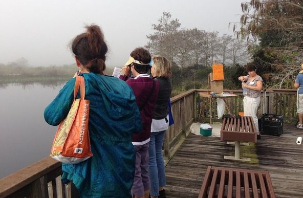 2014 EVERGLADES DAY PAINTOUT